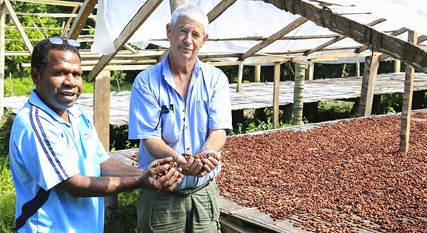 cocoa-vanuatu